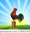 rooster, cartoon, cock 27885599