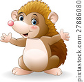 Cute hedgehog cartoon 27886080