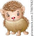 Cute baby hedgehog 27887682