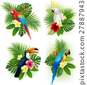 Tropical flower and bird collection set 27887943