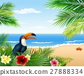 beach bird hibiscus 27888334