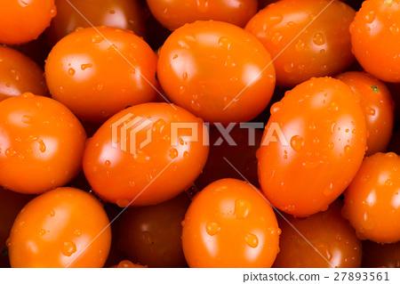 Virgin tomato on a white background 27893561