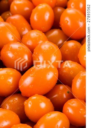 Virgin tomato on a white background 27893562