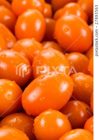 Virgin tomato on a white background 27893563