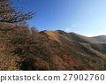 japan, oita prefecture, kyushu 27902760