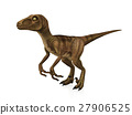 Velociraptor isolated on white background 27906525