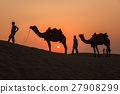 Camels and Sunset 27908299