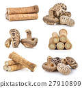 Fresh Burdock roots and shiitake mushroom  27910899