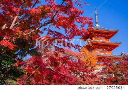 京都的三重塔和秋叶 27923084