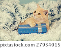 Cute kitten lying on the blue present box 27934015