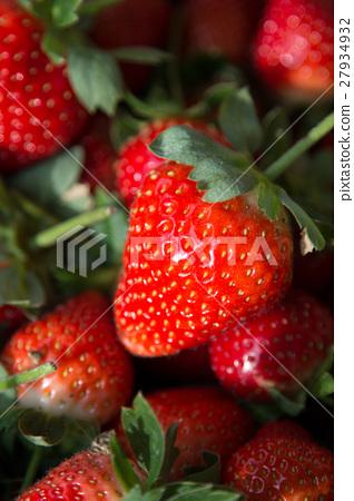 草莓 27934932