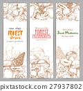 Mushroom sketch for autumn forest banner 27937802