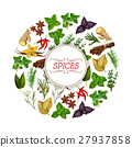 Banner for seasoning, herb or spice food 27937858