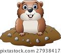 Cartoon funny groundhog 27938417