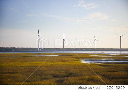 高美溼地,Taiwan, Taichung, high US wetlands,Gaomeiの湿地 27943299