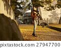 单独在区域内行走的妇女独自旅行 27947700