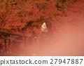 一个女人用叶子狩猎 27947887