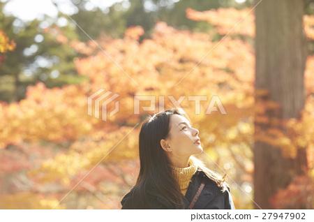 享用秋叶的妇女 27947902