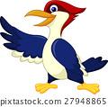 Cute woodpecker presenting 27948865