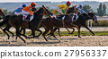 Horse racing in Pyatigorsk 27956337