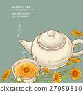calendula tea  vector background 27959810