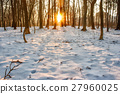 winter, snow, forest 27960025