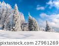 forest, snow, blue 27961269