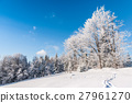 forest, snow, blue 27961270