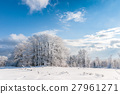 forest, snow, blue 27961271