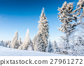 forest, snow, blue 27961272