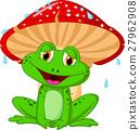 青蛙 动物 蘑菇 27962908