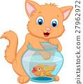 猫 猫咪 鱼 27962972