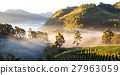 misty morning sunrise in strawberry garden  27963059