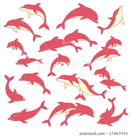 Dolphin illustration 27967443