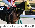 แข่งม้า,ม้า,สัตว์ 27969580