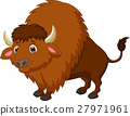 Bison cartoon 27971961