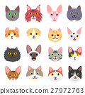สัตว์,ภาพวาดมือ สัตว์,แมว 27972763