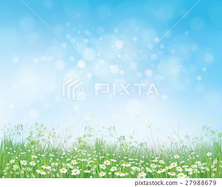 Vector summer nature  background. 27988679