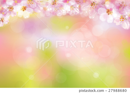 Vector blossoming sakura  background. 27988680