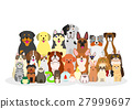 pet, pets, group 27999697