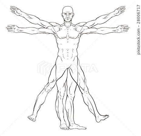 Da Vinci Style Vitruvian Man 28006717