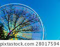 Tree Branches Against Backdrop Of Bright Spinning 28017594