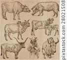 animals collection farm 28021508