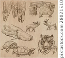 animals collection hand 28021510