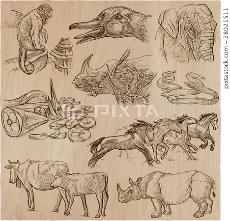 animals - an hand drawn vector pack, collection. 28021511