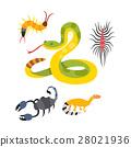 뱀, 벡터, 거미 28021936