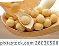 콩 28030508