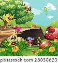 animal park garden 28030623