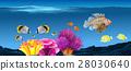 aqua water fish 28030640