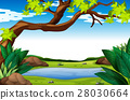 Nature scene with tree and pond 28030664
